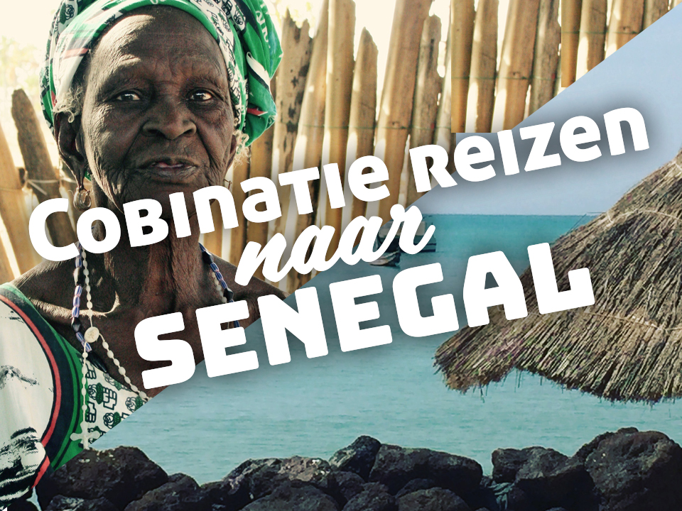 Combinatie tickets Senegal Gambia